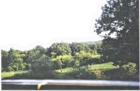 peisaj-tren