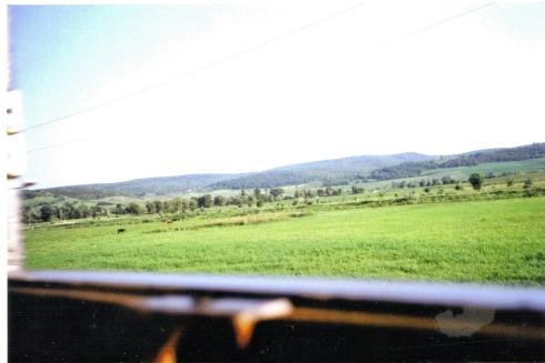 peisaj-vazut-din-tren2