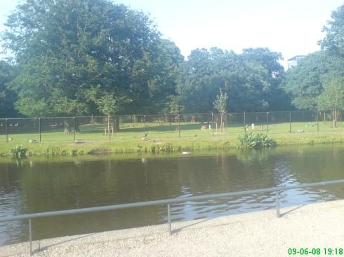 Haga, poze-olanda-2008-014