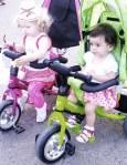 Protestatari pe biciclete (2)